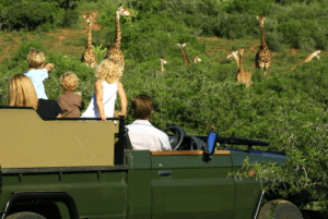 Family safari holiday tour in Kenya, Africa