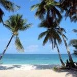 Zanzibar safaris and beach holidays