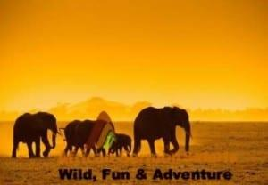13-days-kenya-explorer-tour-kenya-safari-holiday