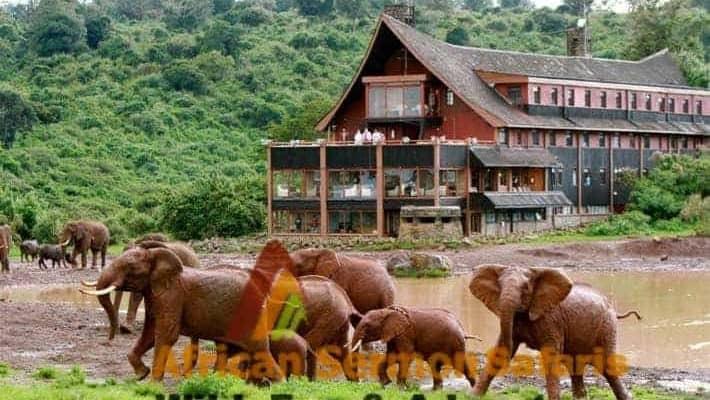 6 Days Aberdares, Lake Nakuru, Masai Mara safari tour