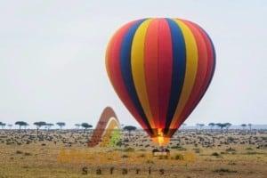 ballooning-safari