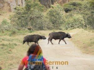 hells_gate_national_park_kenya