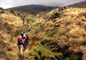 Lemosho Route 8 days Kilimanjaro climb