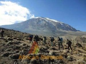 Lemosho-Route-8-days-Kilimanjaro-climb