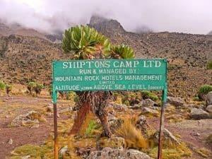 mount-kenya_shimptons-camp