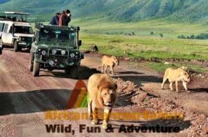 6-day-tanzania-trip