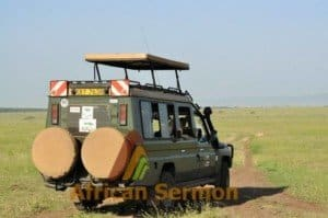 Game viewing on safari in kenya