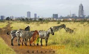 nairobi-day-tours-excursions