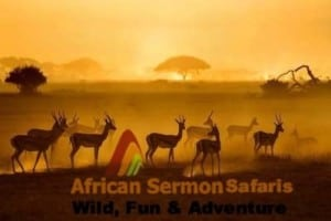 Quick Facts for a Kenya Tour : Kenya safari tour