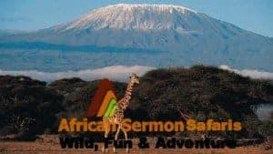11 Days Kenya Tanzania combined tour