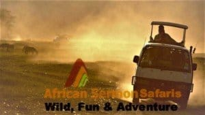 10 day Kenya safari tour and Kenya tour package: Kenya holiday tour