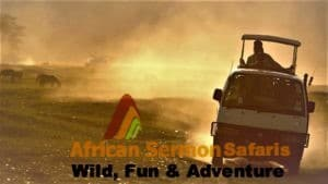 Kenya safari tour and trip packages to wildlife parks