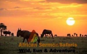 3-Days Maasai Mara Tour in Kenya - masai mara safari