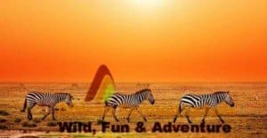 African safari holidays and packages including Kenya holiday safaris