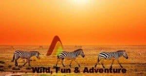 10-Day Kenya Package Safari Tour - African Sermon Safaris