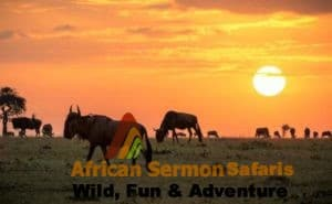 3-Days Maasai Mara Tour in Kenya