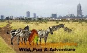 Nairobi National Park Tour - Nairobi Safari Tour