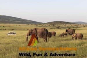 Kenya safari tours and Kenya safari holidays in Masai Mara
